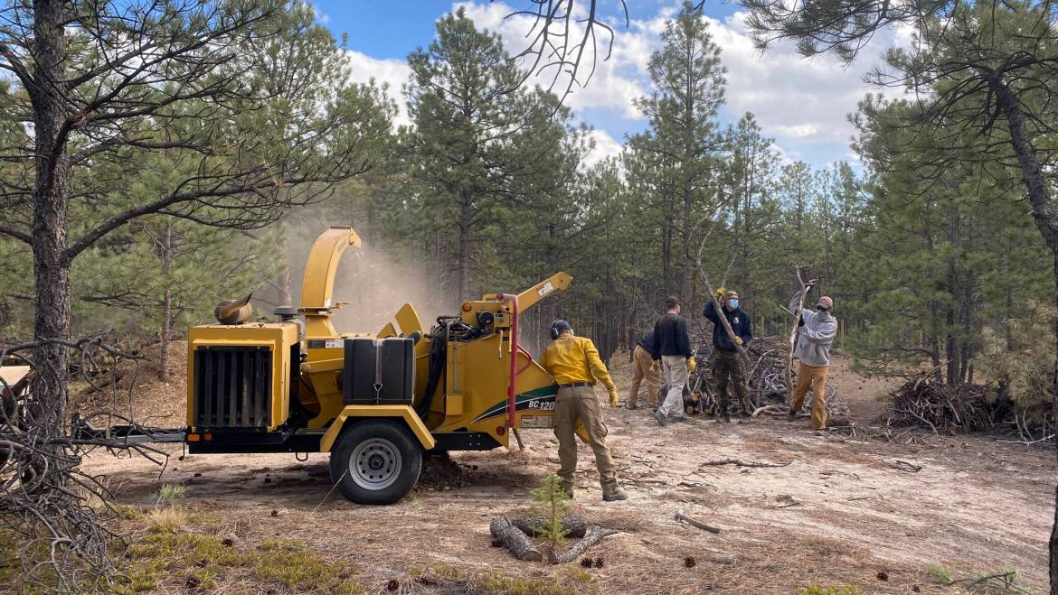 Wildfire Mitigation and Your Colorado Tax Return