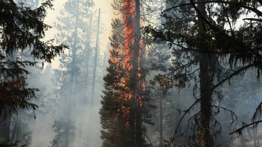 May 1st is Wildfire Community Preparedness Day